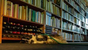 Livraria Artes e Letras